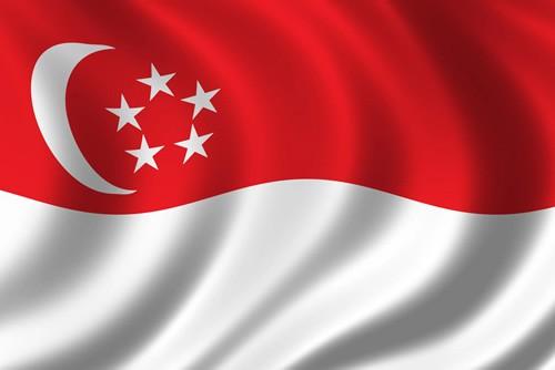 新加坡收款服务